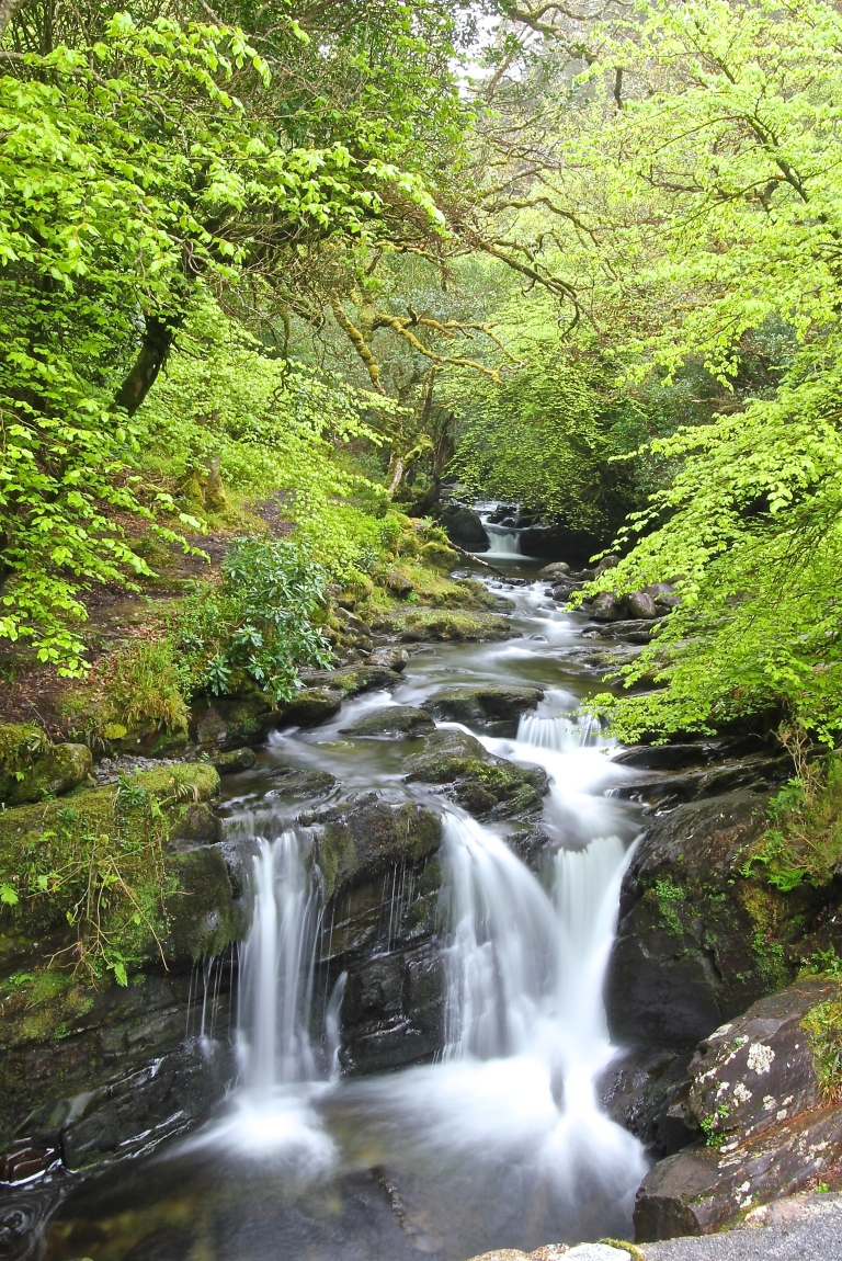 Kerry Water