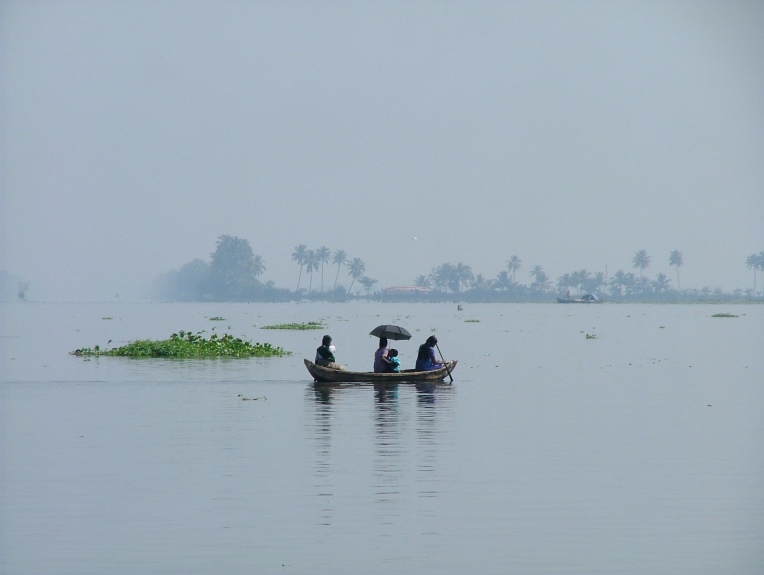 Kerala Morning Calm