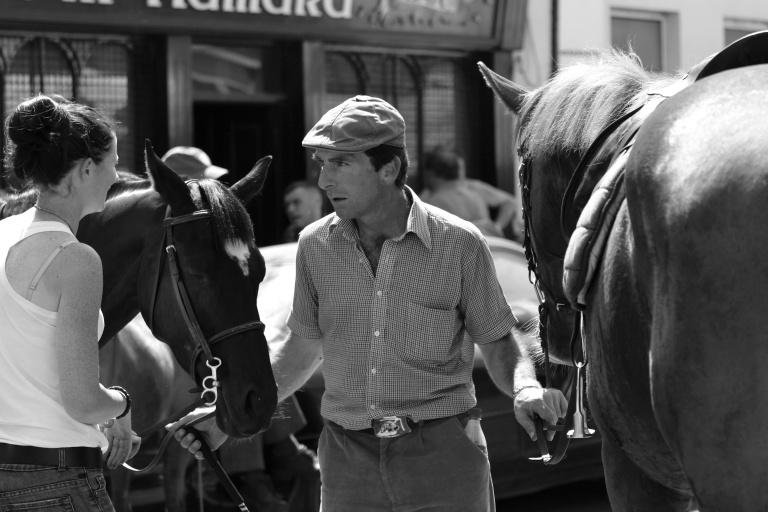 Trading Horses