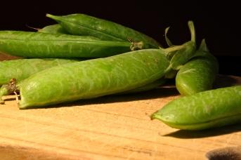 Peas in their Pod Coats