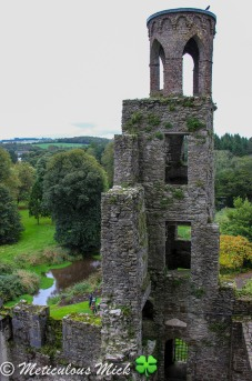Blarney Look-Out