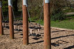 Swings in the Playground