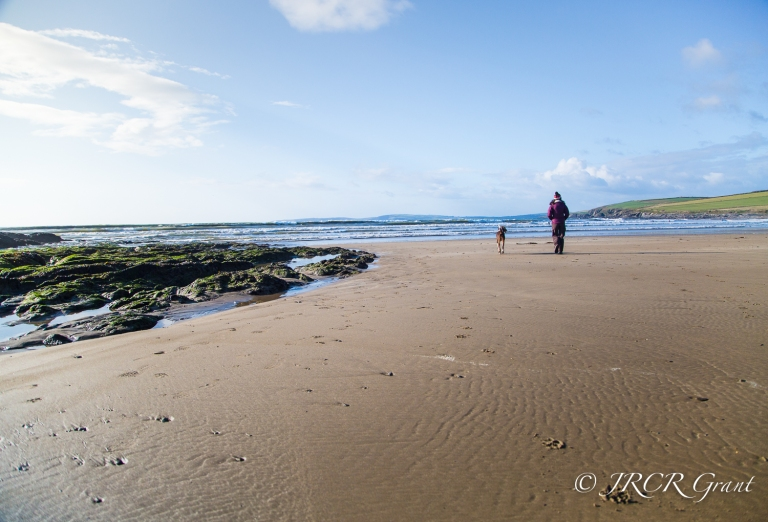 Lady and Dog go walking on a sandy strand