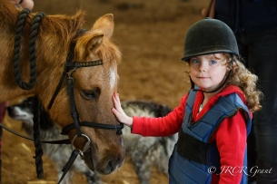 Image of Girl stroking pony