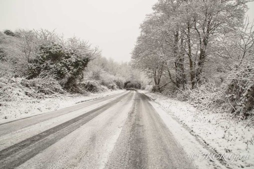snowroad-1