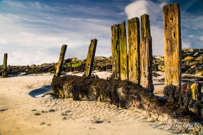Edited version of Seaside Sentries, wooden posts in the sand
