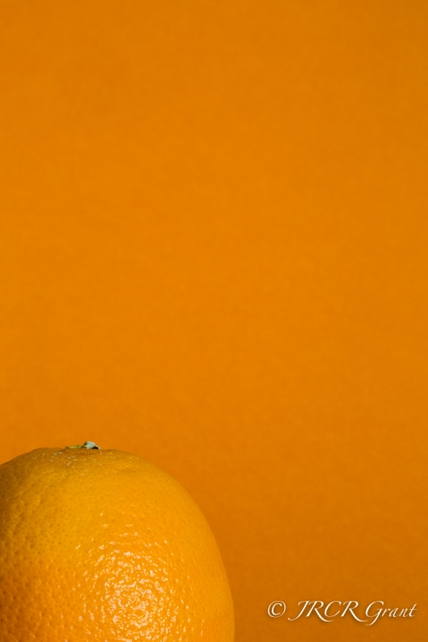 Orange against an orange background