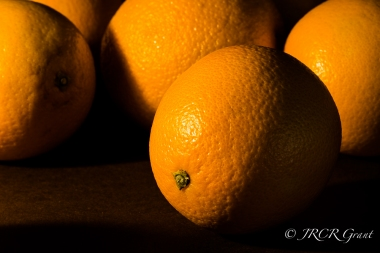 Detail of an Orange in light and shadow