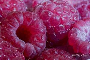 Raspberry Close-up