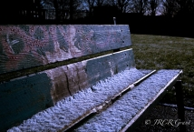 Snow holds on to a Cork Park bench amongst the green of the grass