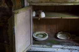 White crockery turns green with years of neglect