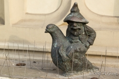 The Pigeon Fancier Gnome