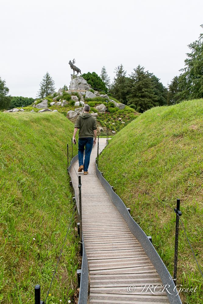 The Caribou of the Newfoundland Memorial