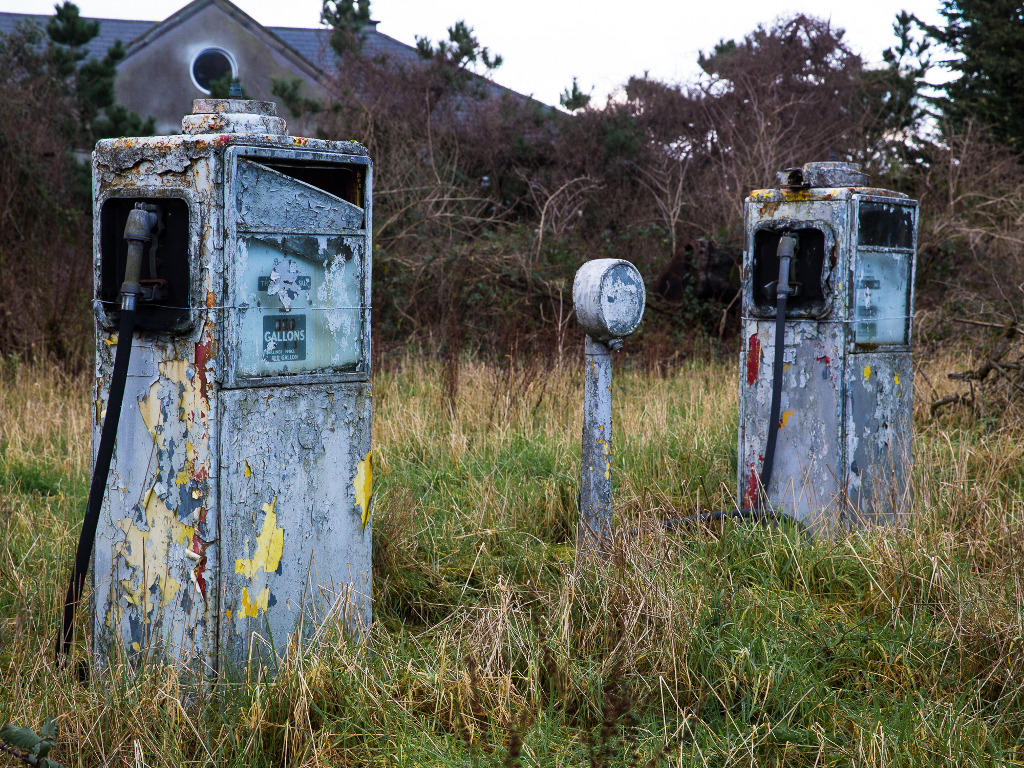 Two old petrol pumps stand in a grassy field