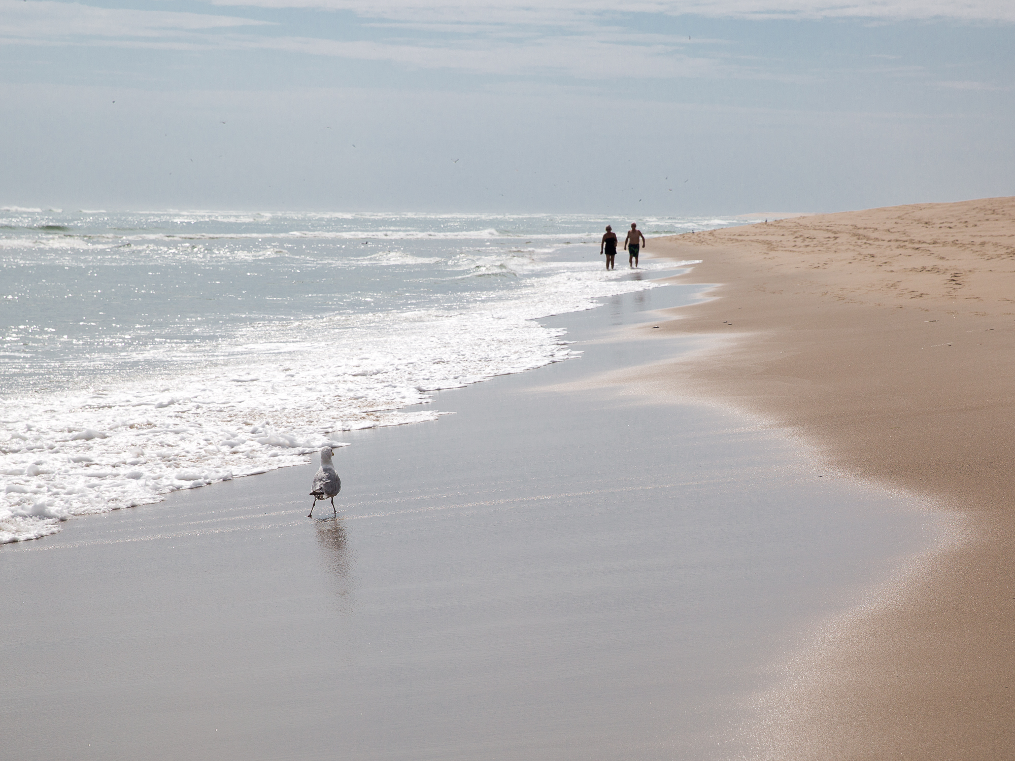 A couple stroll along Cape Cod's sands, waves breaking onto the shore
