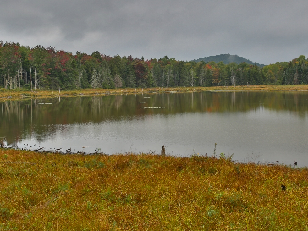 A tranquil scene in Vermont