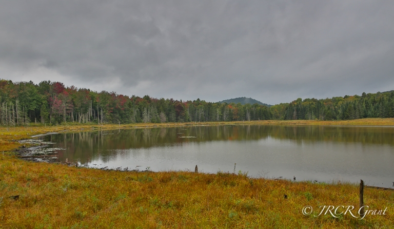 A pond in Vermont, the essence of tranquility