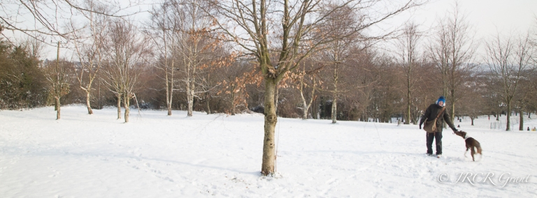 A Cork park covered in a blanket of snow