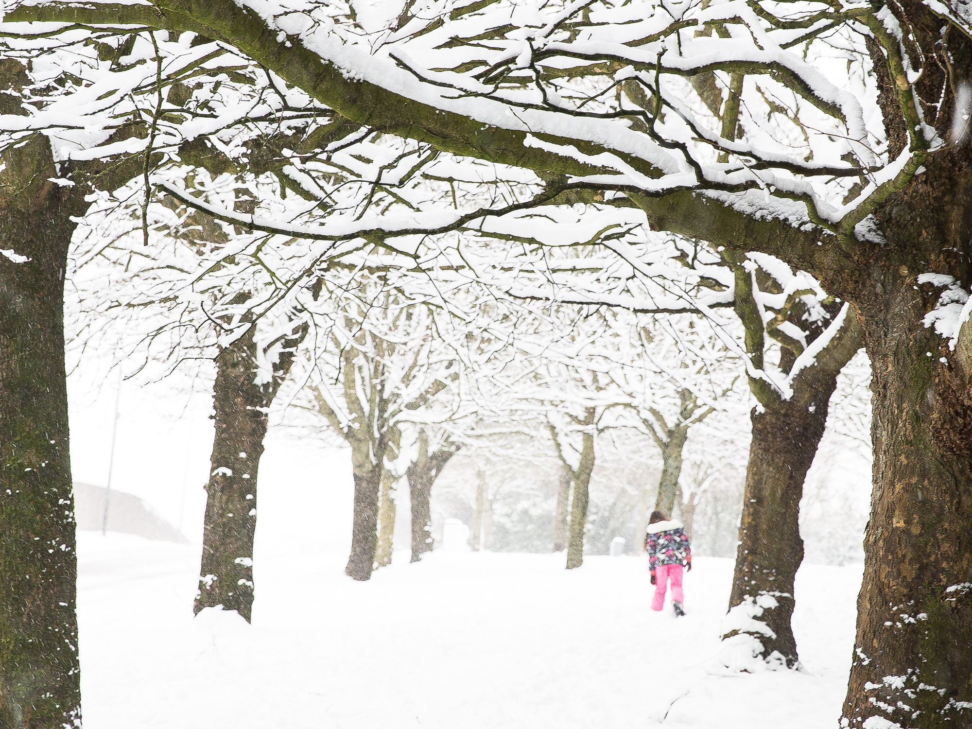A girl in bright pink ski-pants makes her way through the deep snow in Cork City, Ireland