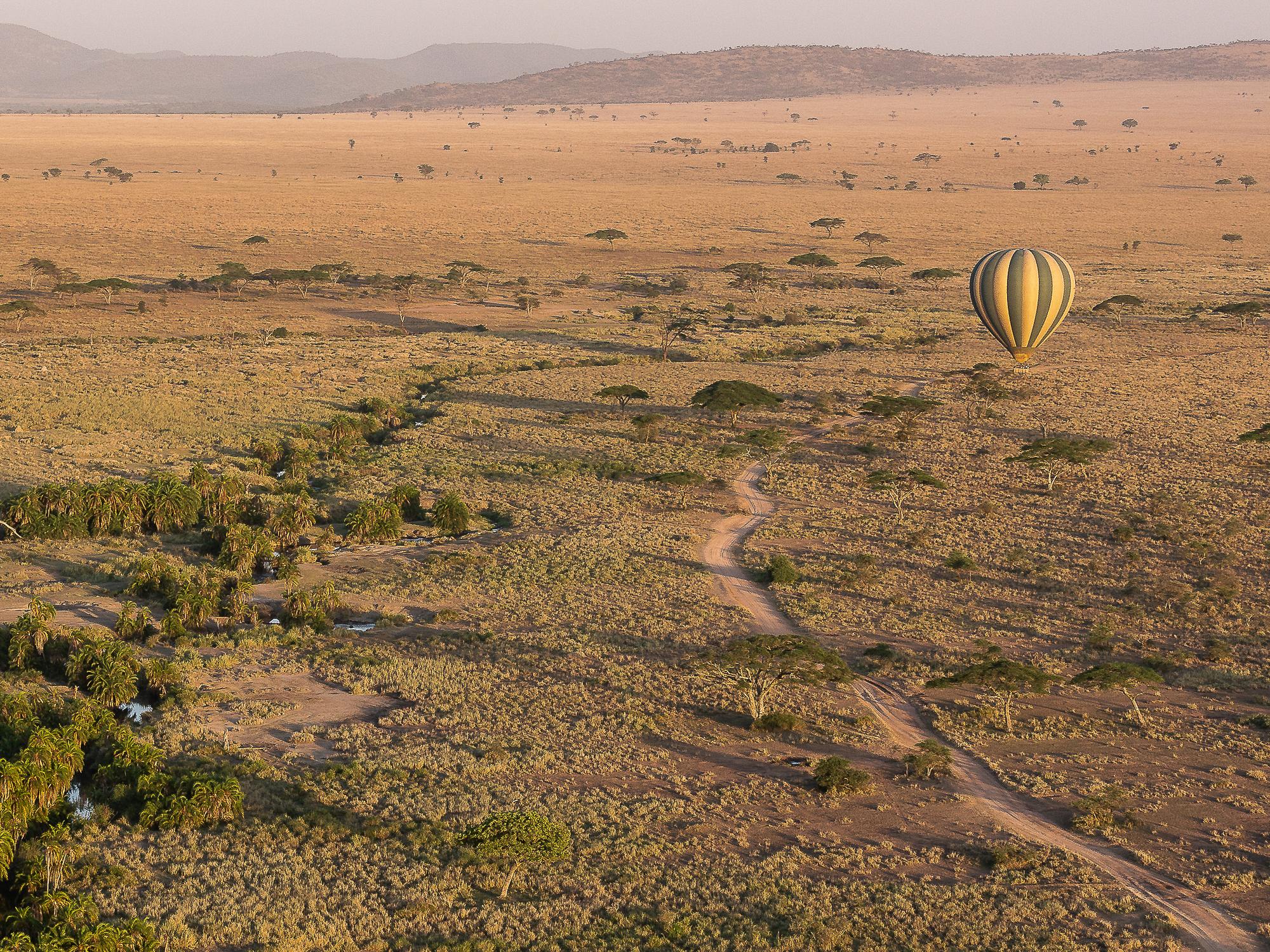 A hot air balloon surveys the African plains