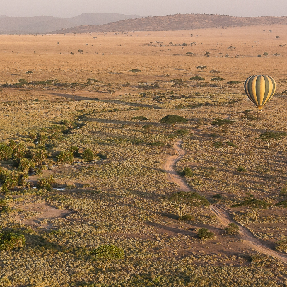 A hot air balloon surveys the African plains