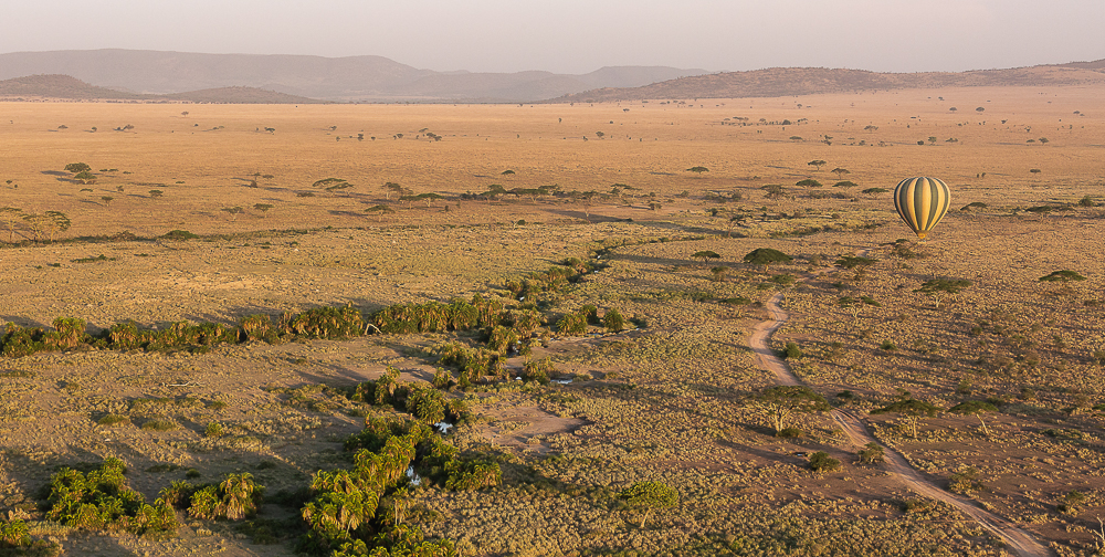 Plain Panorama from the basket of a hot air balloon over the Serengeti.