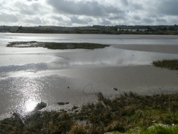 An estuary provides water a mud hazards for the golfer